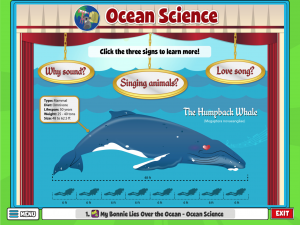 Educational activity explores ocean science with a whale and facts about sounds.