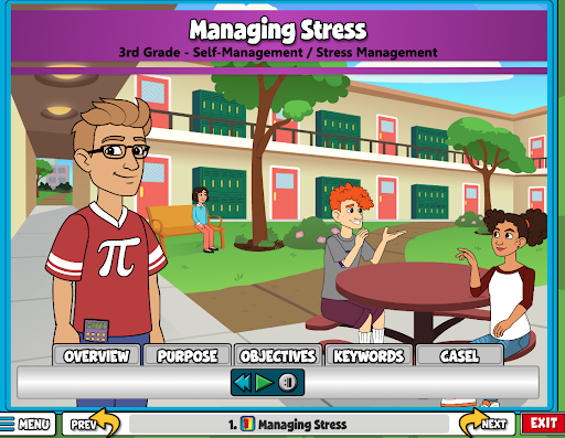 Manage Stress Overview